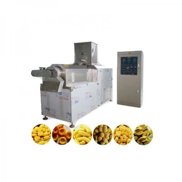 Twin Screw Extruder Puffed Corn Snack Making Machine Snack Food Processing Line #1 image