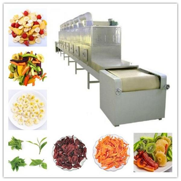 Large Industrial Continuous Microwave Drying Equipment with Belt Conveyor #2 image