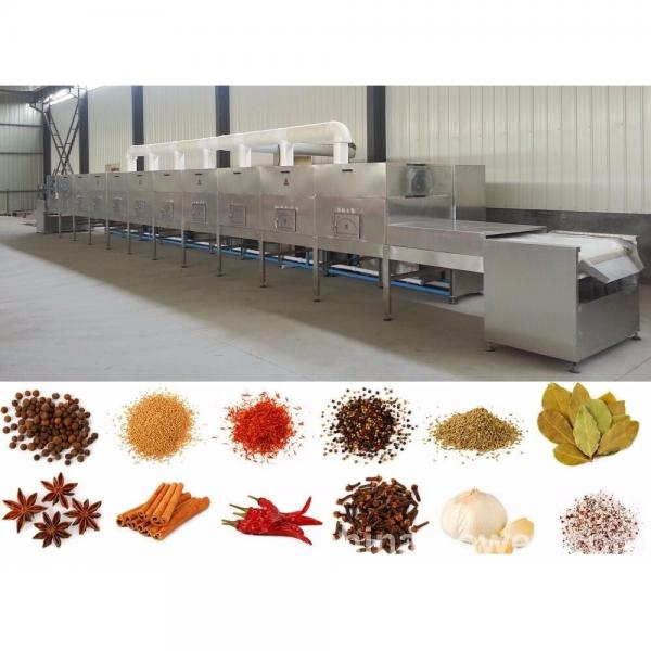 Microwave dryer for vegetable tunnel microwave dryer for sale fruit microwave drying equipment and sterilizer machine #1 image